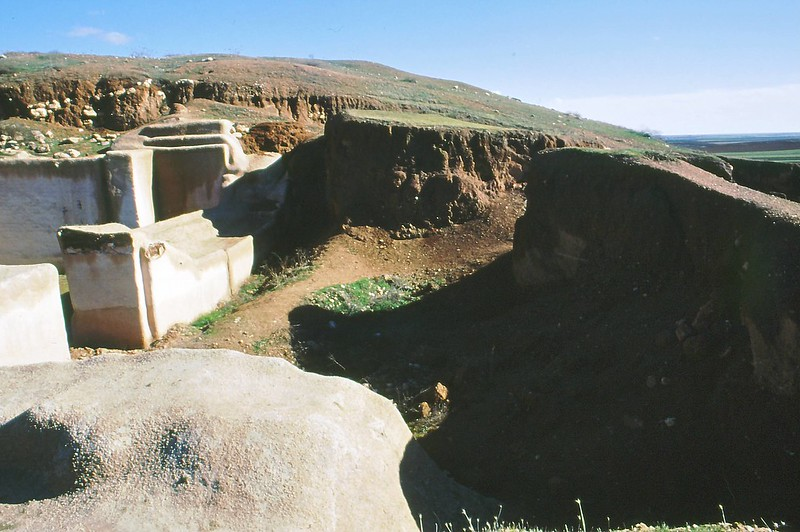 Ebla 2002-0012
