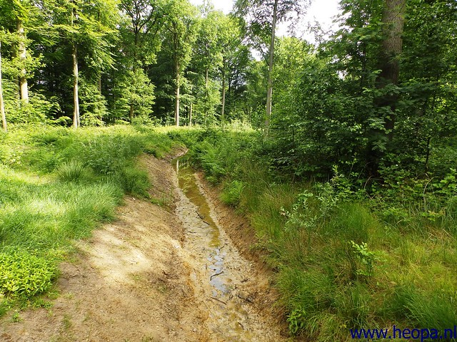 2014-06-07 Breda 30 Km. (37)