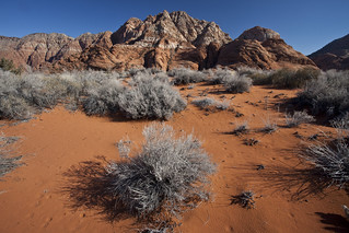 Red Cliffs NCA | by mypubliclands