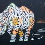 Camden rhinos