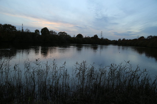 whisby nature park blue hour autumn lincoln lake sky evening water november