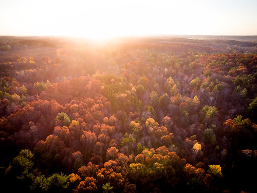 rockford michigan unitedstates us sunset dji drone flight sky fall leaves grass field park