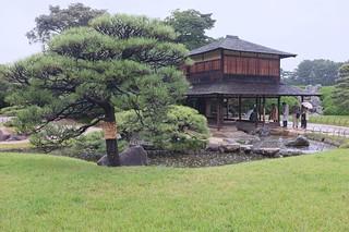 Korakuen Garden   by MatthewW