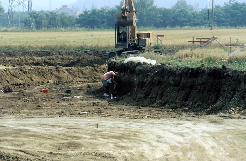 Collecchio 1992-0001
