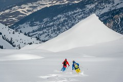 © Tristan Shu pour pure ski company429