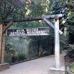 Image: Welcome to the Redwoods