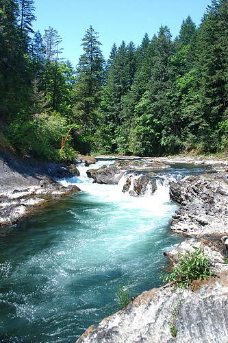 Marie Canyon in Cowichan River Park, Cowichan Valley, Vancouver Island, British Columbia, Canada