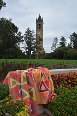 Chopsticks quilts - Iowa State Tridedlt version