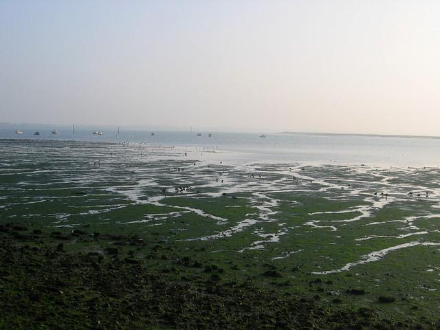Langstone Harbour near Havant