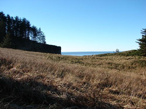 Meadow along the Elk Flats Trail