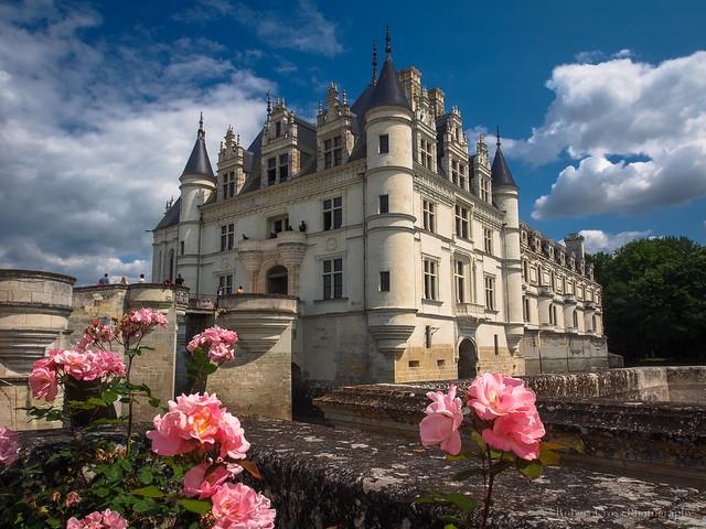 The Rose Château