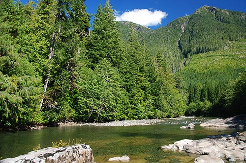 Kennedy River north of Clayoquot Plateau Park, Pacific Rim Highway 4, Vancouver Island, British Columbia