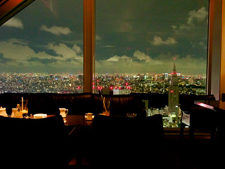 View from the Park Hyatt Hotel bar in Tokyo | by andrew_maier