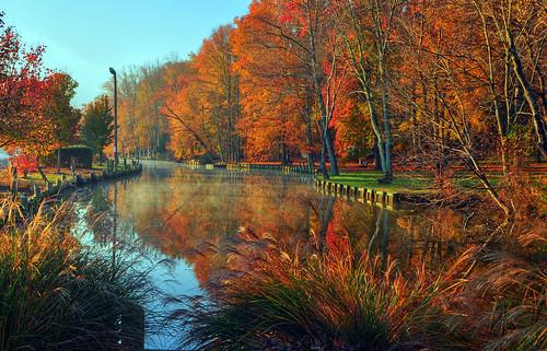 morning fall river autumn maryland charlescounty sunrise foliage michaeljanidlo