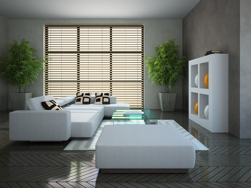 interior with blinds