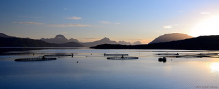 Salmon farming above the arctic circle | by Chris_AJ