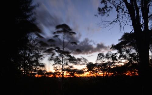 autumn trees sunset sky clouds countryside wind dusk silhouettes windy australia slowshutter queensland tamborinemountain sequeensland