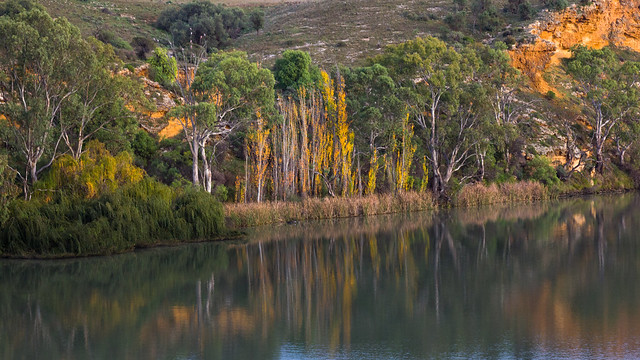 Autumn on the Murray River