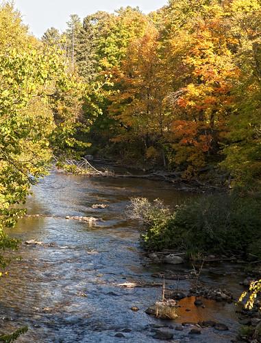 autumn river trees colours