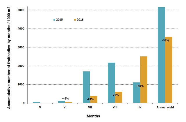 Abundance of fruiting by months and total annual yield.