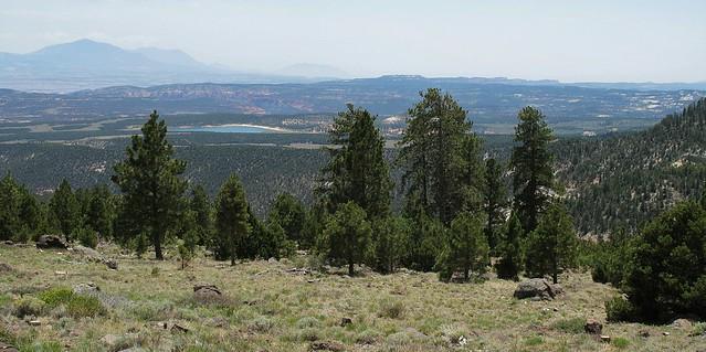 Utah12 Scenic Byway ~ Dixie NF