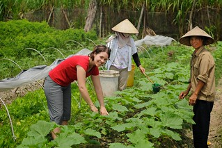 Australian volunteer Tamara Baillie worked as a business development officer with the Thanh Xuan Organic project in Vietnam, 2010. Photo: Tamara Baillie / AusAID | by DFAT photo library