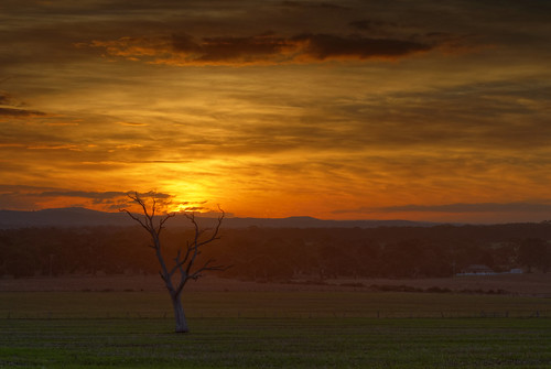 sunset australia melbourne greenvale