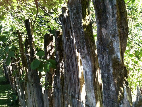chile madera antiguo osorno olvidado cercos uploaded:by=flickrmobile flickriosapp:filter=nofilter