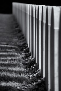 Row of tombstones | by LYSVIK PHOTOS