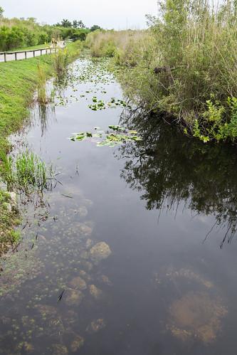 Everglades National Park, Florida, USA | by dconvertini