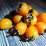 Persimmons 雞心柿