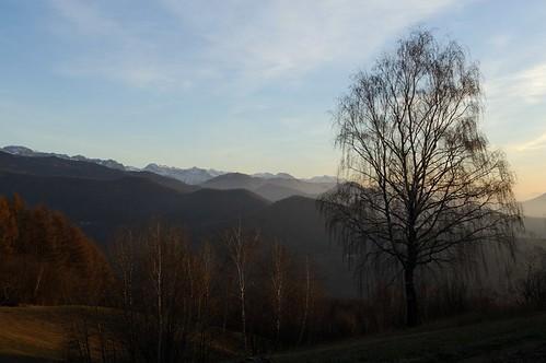 trees mountain alberi clouds sunrise nuvole alba montagna craguenza kraguojnca spignon