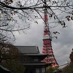 Tokyo-Ginza-Roppongi-12