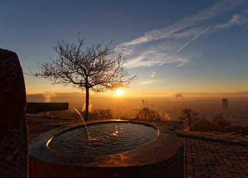 sunrise dawn morning sun sunlight sky tree fountain city zurich switzerland waid fog gold blue