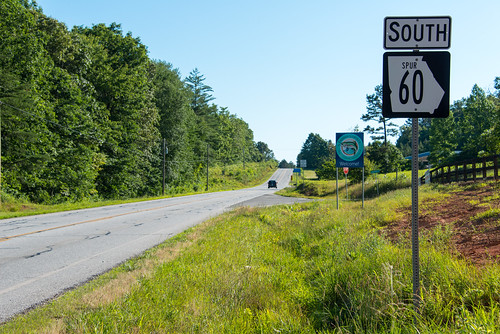georgia spur northcarolina highwaysign sweetgum sr60 stateroute60 fannincounty nikond800