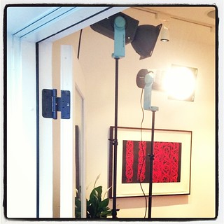There's a Broncolor patch growing in the corner of the dining room.