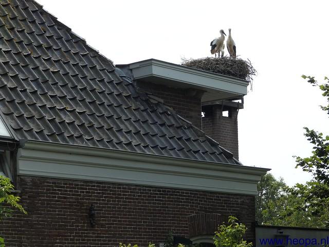 06-07-2013 Utrecht 37.5 Km (69)