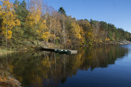 göteborg gothenburg sverige sweden schweden fs161030 emellan fotosondag autumn reflections fall tamron 18270mm tamron18270mm nikon d7100 nikond7100