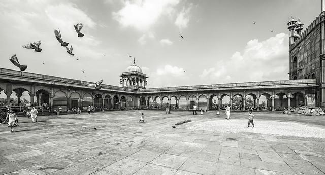 La bambina che corre - New Delhi