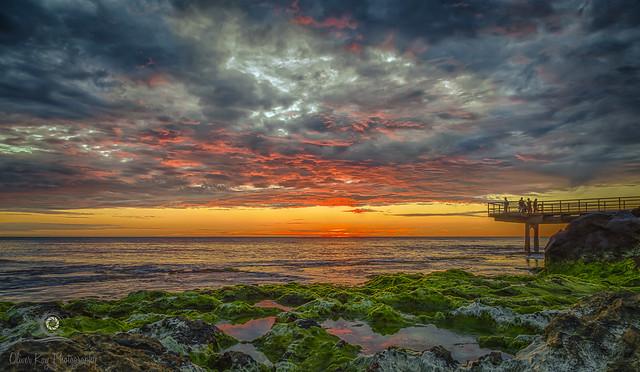 - Green Sunset -
