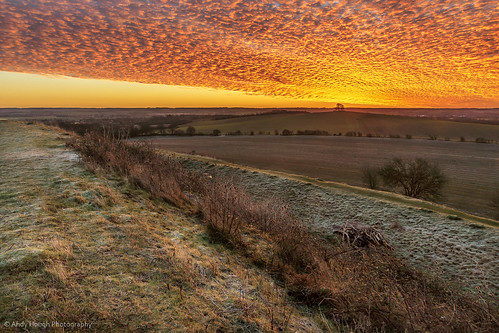 morning trees england orange sunrise landscape dawn unitedkingdom sony hill fields wallingford a77 wittenhamclumps barrowhill sonyalpha andyhough earthtrust sonyzeissdt1680 andyhoughphotography