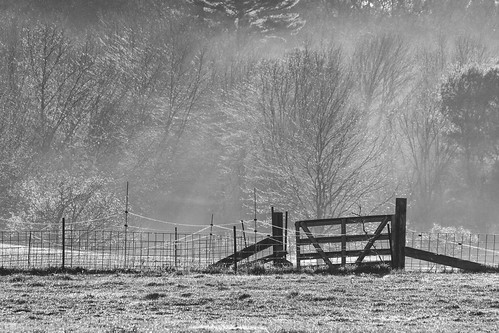 fence tree sunrise bw backlit stowma newengland canon5dmarkii