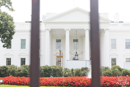 white house | by The Better Martha
