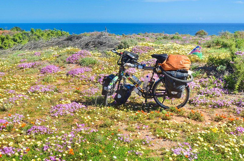Day657-Bike-140822