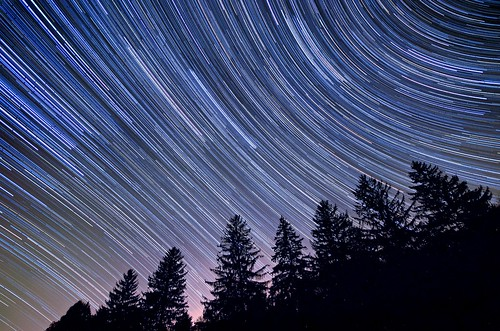night sky timelapse stars trees spruce forest landscape nightscape astrophotography