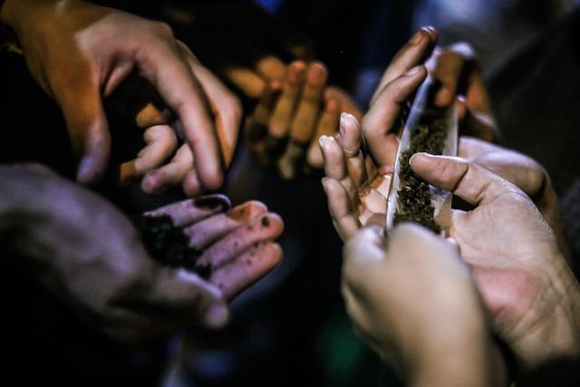 Domingo Na Casa | Especial Cannabis Medicinal 20/04/2014