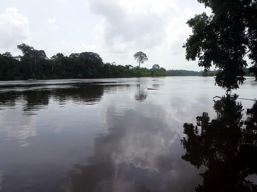 river rapids suriname ladoani ferulassi