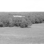 Glen Field and Woods_Panorama BW