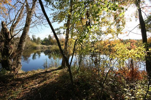 Nature reserve | Sigma 10~20mm