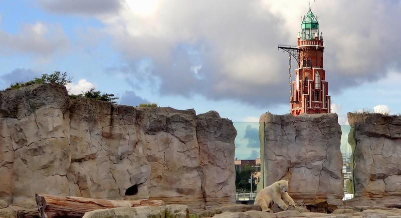 Polar Bear Lloyd and the Simon-Loschen-Lighthouse